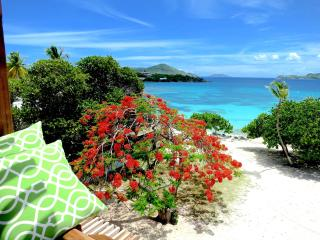 'Billion$ View' New Deluxe 2FL Beachfront Villa - East End vacation rentals