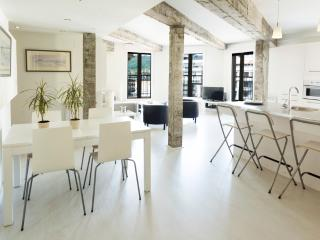 Bright Modern Terraced with Beach View WIFI - San Sebastian - Donostia vacation rentals