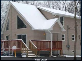 2Hr from NYC/Ski Winter&Swim in Summer 4 min drive - Lackawaxen vacation rentals