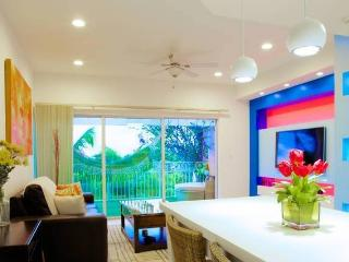 PENTHOUSE IN GRACE BAY + A FREE CAR - Leeward vacation rentals