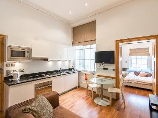 Oxford Street one bedroom aparment - London vacation rentals