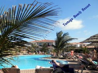 Gorgeous 2 bedroom Apartment in Santa Maria - Santa Maria vacation rentals