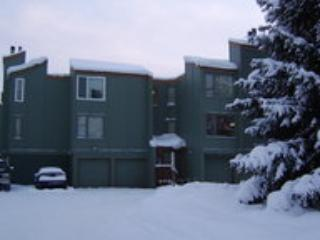 anchorage 2 bedroom condo - Eagle River vacation rentals