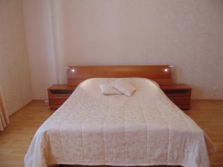 Comfortable 1 bedroom Apartment in Saint Petersburg - Saint Petersburg vacation rentals