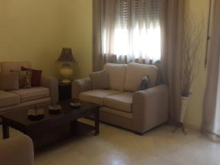 New Furnished 3BR rent near Hamra - Beirut vacation rentals