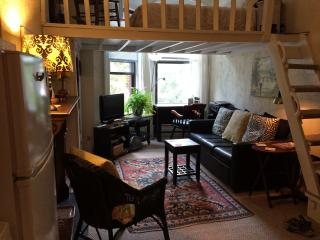 Cozy efficiency overlooking  the most beautiful street in the Back Bay - Greater Boston vacation rentals
