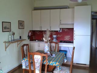Nice Condo with Deck and Internet Access - Tignale vacation rentals