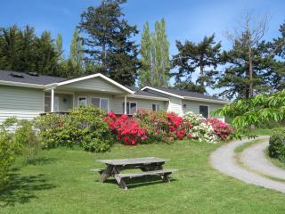 One of a kind 3 Bedroom View Home in Historic Coupeville - Coupeville vacation rentals
