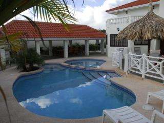 Grote Berg | Charming villa for 10 pers. with pool - Willemstad vacation rentals