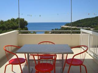 Two Bedroom Apartment with Spacious Terrace - Hvar vacation rentals
