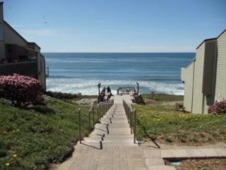 Oceanfront Paradise - 3BD/2BA - 100 yds to beach - Encinitas vacation rentals