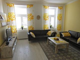 Next to Palace Schönbrunn - Apt. 7 - Vienna vacation rentals