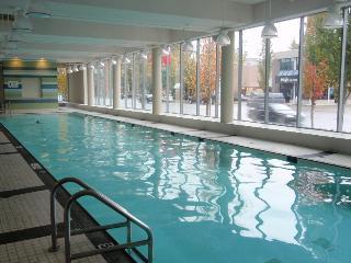 2 BD/2BA  Luxury Garden Apt  @ Central Richmond - Richmond vacation rentals