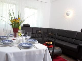 apartment centre-Prater-Danube 1 - Vienna vacation rentals