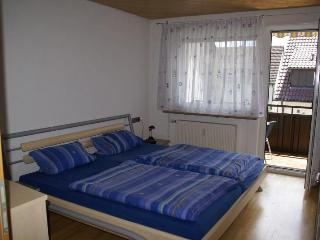 Apt 2 rooms in Baden-Württemberg ( Germany ) - Stuttgart vacation rentals