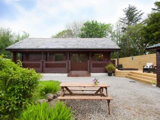 Gisburn Forest Lodge with private Hot tub - Tosside vacation rentals
