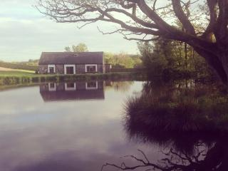 Perfect Cottage with Internet Access and Kettle - Saint Clears vacation rentals