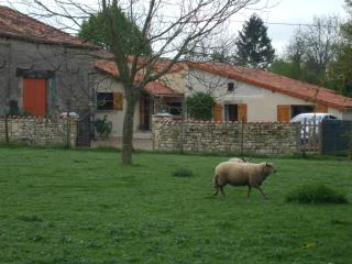 the doon  sniggled  in the french countryside - Poitou-Charentes vacation rentals
