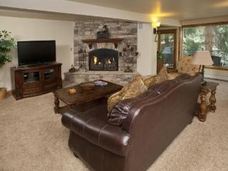 This 3 bedroom Vail vacation home sits along scenic Gore Creek in peaceful wooded surroundings. - Vail vacation rentals
