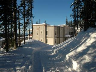 Location, location!  Ski in/out  Pet Friendly too! - Okanagan Valley vacation rentals
