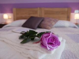 Romantic 1 bedroom Condo in La Morra - La Morra vacation rentals