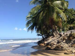 Beachfront Apartment with amazing sunsets - Aguada vacation rentals