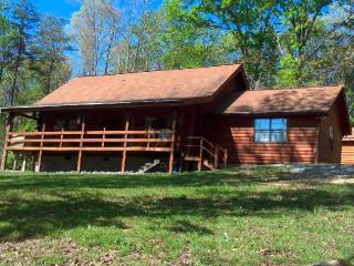 Log Home in Beautiful Private Setting on 10 acres with Pond - Dunlap vacation rentals