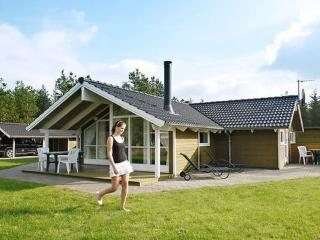 Grønhøj Strand ~ RA13985 - Lokken vacation rentals