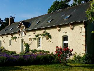 Nice 3 bedroom Cottage in Jarze - Jarze vacation rentals