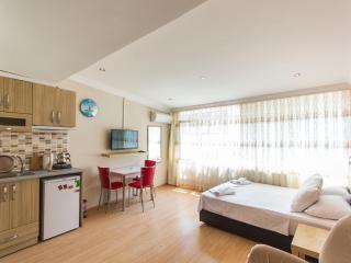 Studio Flat Near Istiklal Avenue Taksim - 125 - Istanbul vacation rentals