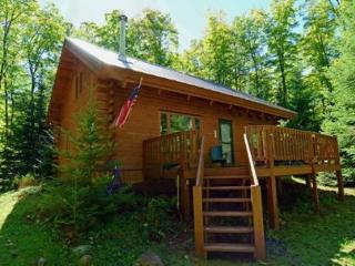 Cares Away - Atkins Lake - Chilton vacation rentals