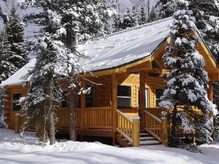 Moose - Secluded Wilderness Cabin w/ River fishing - South Central Colorado vacation rentals