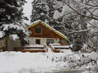 Champoluc - Chalet, Private Hot Tub, Riverfront - South Fork vacation rentals