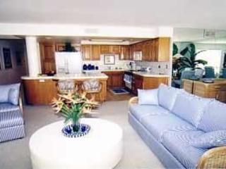 San Diego Oceanfront Condo - Imperial Beach vacation rentals