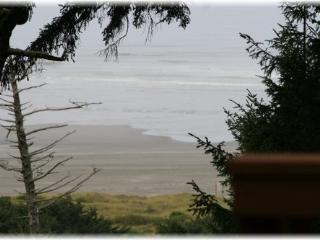 Fabulous beach view cabin, close to Ocean Shores! - Copalis Beach vacation rentals