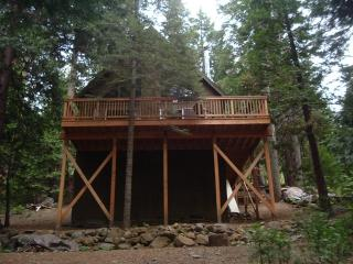 Rustic Sierra Cabin near Bear Valley - Camp Connell vacation rentals