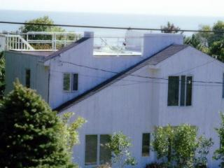 Beach House in Montauk with Ocean Views - Montauk vacation rentals