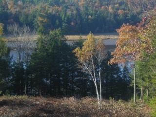 Moose Crossing...LUXURY  Home In Mid- coast Maine - Stockton Springs vacation rentals