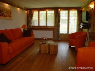 Luxury studio in the center of the resort - Chateau-d'Oex vacation rentals