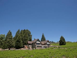 Upper Meadow Lodge*Retreats,Weddings,Celebrations* - Palomar Mountain vacation rentals