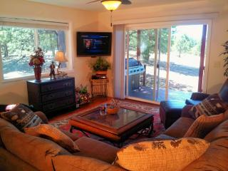 Bear Lodge Home: Colo. Springs / Monument, Colo - Monument vacation rentals