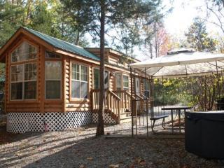 Cozy Wilderness Lodge, Sleeps 6 - Cream Ridge vacation rentals