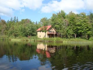lakefront cabin, snowmobiling, atving and skiing - Upson vacation rentals