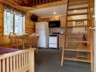 Affordable Cabin in Pines - Hill City vacation rentals