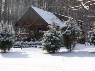Wise Old Owl Cabin SnowSki Paoli Peaks last chance - Indiana vacation rentals