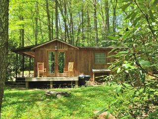 Rabbit Hole - Rustic Cabin with bold stream - Banner Elk vacation rentals