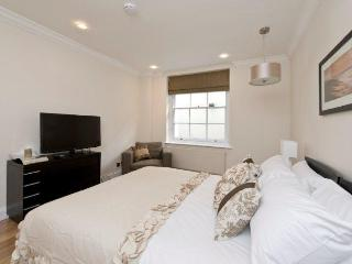 Modern 2 bed 2 bath Mayfair Apartment - London vacation rentals