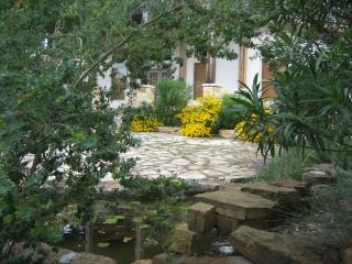 Eco-Friendly, Water Sports, Wineries,  Environment - Canyon Lake vacation rentals