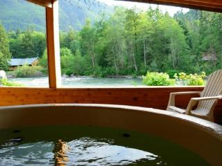 Romantic cabin on the Skykomish River with hot tub - Skykomish vacation rentals