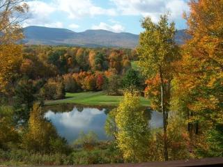 CHALET ON THE HILL-VIEWS-NEAR SKI WINDHAM - Hudson vacation rentals